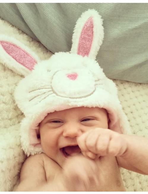 mollie-bunny